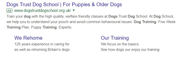 An example of GoogleAds Ad Copy